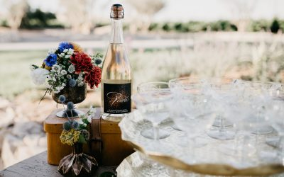 Ten Reasons to Visit Paso Robles Now
