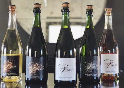 12 Bottle Lineup